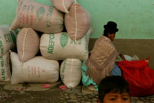 A stack of 50-pound bags of Bolivian coca leaf.