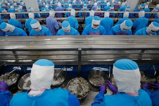 Workers peel shrimps at a factory of seafood supplier Thai Union in Samut Sakhon, Thailand.