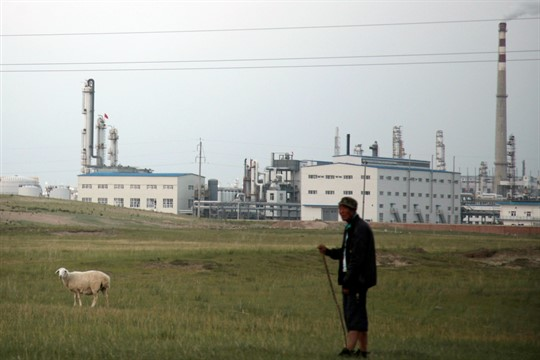 A sheep herder in northern China's Inner Mongolia region