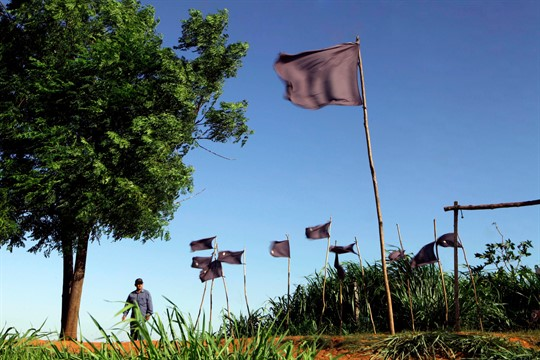 A farmer walks near flags representing 11 farmers killed during clashes with police, in Curuguaty, Paraguay