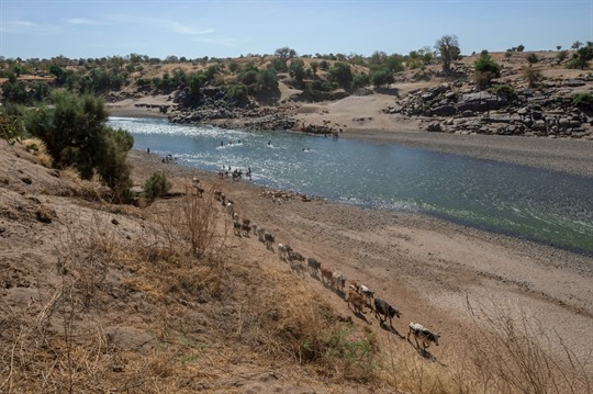 The banks of the Tekeze River, at the Sudan-Ethiopia border.