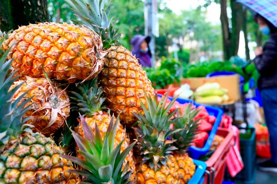 A hawker selling pineapples in Taipei, Taiwan