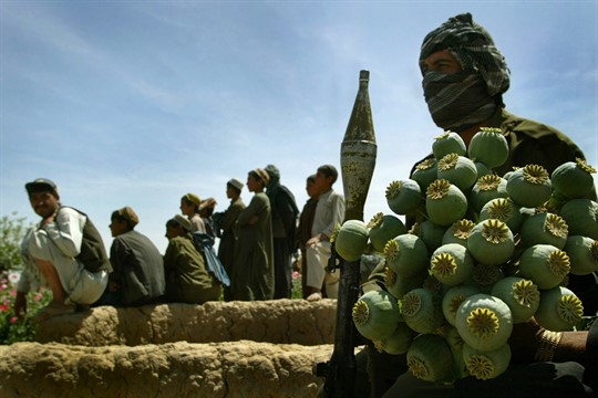 Armed Afghan policemen sit with confiscated poppy bulbs in Karezaq, Afghanistan